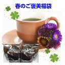【ポイント10倍】ブルーマウンテンブレンド入!「春のご褒美福...
