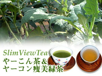 SlimViewTea yacon achene beauty green tea & or-dented tea 10P04Aug13