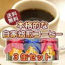 "A coffee gift ""self roast coffee three cans set"" [Hiroshima] [gift] [comfortable ギフ _ expands] [comfortable ギフ _ expands an address] 10P06may13 [RCP]"
