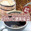 最高級!ブルーマウンテンNo.1入福袋【自分にご褒美】送料無料!【RCP】