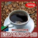 自家焙煎コーヒー「浅煎りキリマンジャロ」500g【RCP】10P01Oct16