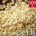 自然栽培玄米麹500g