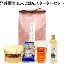 楽天HIRYU【令和2年まっしぐら】HIRYU Style 発芽酵素玄米ごはんスターターセット玄米、小豆、塩、EM-X GOLD 5点セット