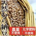 天然わら納豆 吟醸納豆ふくふく 300g