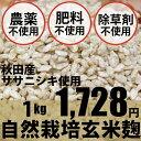 自然栽培玄米麹 1kg マルカワ味噌★味噌や甘酒には農薬・肥料不使用の麹で★