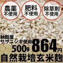 自然栽培 玄米麹 500g マルカワ味噌★味噌や甘酒には無農薬・無肥料の生麹★