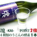 【ポイント2倍】うこん塊-KAI-(カイ...