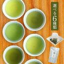 送料無料 6種類のお茶 2袋選べる日本茶 緑茶ティーバッグ お茶 ティーパック お試し お茶