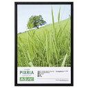 ハクバ HAKUBA フォトフレーム 木製 ピクスリア 写真サイズ:A3ノビ ブラック FWPX-BKA3N 4977187509595