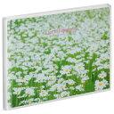 ハクバ HAKUBA フォトアルバム Pポケットアルバム NP ポストカードサイズ 横 20枚収納 白い花畑 APNP-KGY-SHB 4977187527346