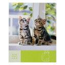 持ち運びに便利!写真がピタっと、ずれないHAKUBA ミニピタットアルバム 子猫 (カラー:キミドリ)