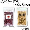 ザクロシード 40g + 松の実 100g 送料無料 ザクロのフリーズドライ 乾燥 ざくろ ドライ 不飽和脂肪酸 リノレン酸 オレイン酸 送料込