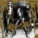 艺人名: Ka行 - 【送料無料】 Guitar Wolf ギターウルフ / ゴールデンブラック 【CD】