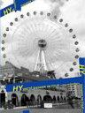HY エイチワイ / WATTA SHINKER '06 TOUR ~mu-ruiinchu~ 【DVD】