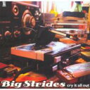 Big Strides / Cry It All Out 輸入盤 【CD】