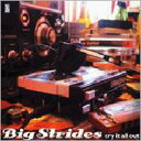 Big Strides / Cry It All Out 【CD】