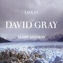 另类朋克 - David Gray / Life In Slow Motion 【CD】