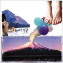 Why? ホワイ / Elephant Eyelash 【LP】