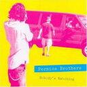 艺人名: P - Pernice Brothers / Nobody's Watching Nobody's Listening 輸入盤 【CD】