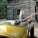 艺人名: J - Junior Brown / Down Home Chrome 輸入盤 【CD】