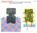 藝人名: T - Terri Lyne Carrington / Structure 輸入盤 【CD】