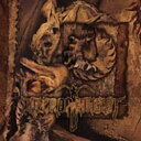 Artist Name: N - Necrophagist / Onset Of Putrefaction 輸入盤 【CD】