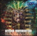 Afrika Bambaataa アフリカ・バンバータ / Dark Matter - Moving At The Speed Of Light 【LP】