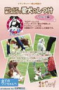 愛犬のしつけ: ワルツ編 【DVD】