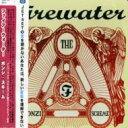 Firewater / Ponzi Scheme 【CD】