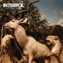 Artist Name: I - Interpol インターポール / Our Love To Admire 【CD】