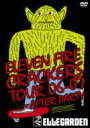 ELLEGARDEN エルレガーデン / ELEVEN FIRE CRACKERS TOUR 06-07 〜AFTER PARTY 【DVD】