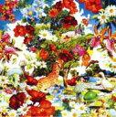 Artist Name: A Line - 【送料無料】 orange pekoe オレンジペコー / ワイルド フラワーズ 【CD】