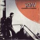 Artist Name: Y - Yoav / Charmed & Strange 輸入盤 【CD】