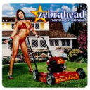 Artist Name: Z - ZEBRAHEAD ゼブラヘッド / Playmate Of The Year 【CD】