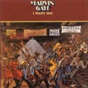 Marvin Gaye マービンゲイ / I Want You (アナログレコード) 【LP】