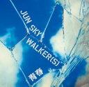 JUN SKY WALKER(S) ジュンスカイウォーカーズ / 青春 【CD Maxi】