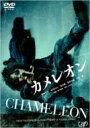 カメレオン 【DVD】