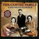 Artist Name: C - Carter Family / Wildwood Flower: Anthology 輸入盤 【CD】