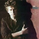 Don Henley ドンヘンリー / Building The Perfect Beast 輸入盤 【CD】