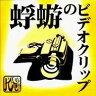 蜉蝣 Kagerou / 蜉蝣のビデオクリップ 【DVD】