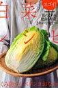 スゴイ!白菜レシピむくみ防止!ペタンコおなかに!【ムック】