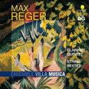 作曲家名: Ra行 - Reger レーガー / クラリネット五重奏曲、弦楽六重奏曲 アンサンブル・ヴィラ・ムジカ 輸入盤 【CD】