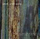 藝人名: C - 【送料無料】 Colin Riley / Pianocircus / Bill Bruford / Skin & Wire 輸入盤 【CD】