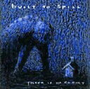 Built To Spill ビルトトゥスピル / There Is No Enemy 輸入盤 【CD】