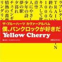 艺人名: A行 - Yellow Cherry イエローチェリー / THE BLUE HEARTSカヴァーアルバム「僕、パンクロックが好きだ」 【CD】