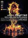 Wagner ワーグナー / 『ジークフリート』全曲 パドリッサ演出、メータ&バレンシア州立管、ライアン、ウーシタロ、他(2007 ステレオ)(2DVD) 【DVD】