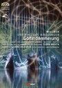 Wagner ワーグナー / 『神々の黄昏』全曲 パドリッサ演出、メータ&バレンシア州立管、ウィルソン、サルミネン、他(2007 ステレオ)(2DVD) 【DVD】