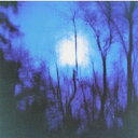 Flying Saucer Attack / Further 【LP】