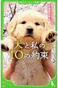 犬と私の10の約束 角川つばさ文庫 / サイトウアカリ 【新書】