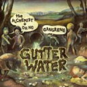 Artist Name: G - Gangrene / Gutter Water 輸入盤 【CD】